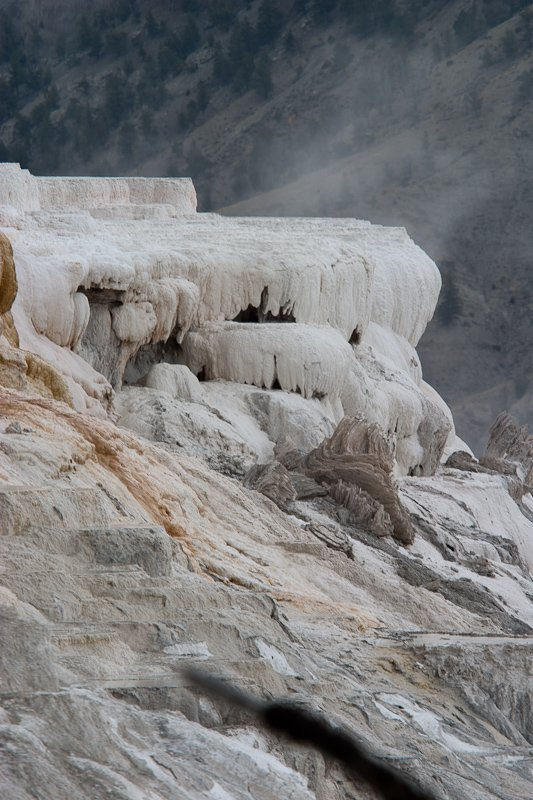 050 Yellowstone_CRW_3116.jpg